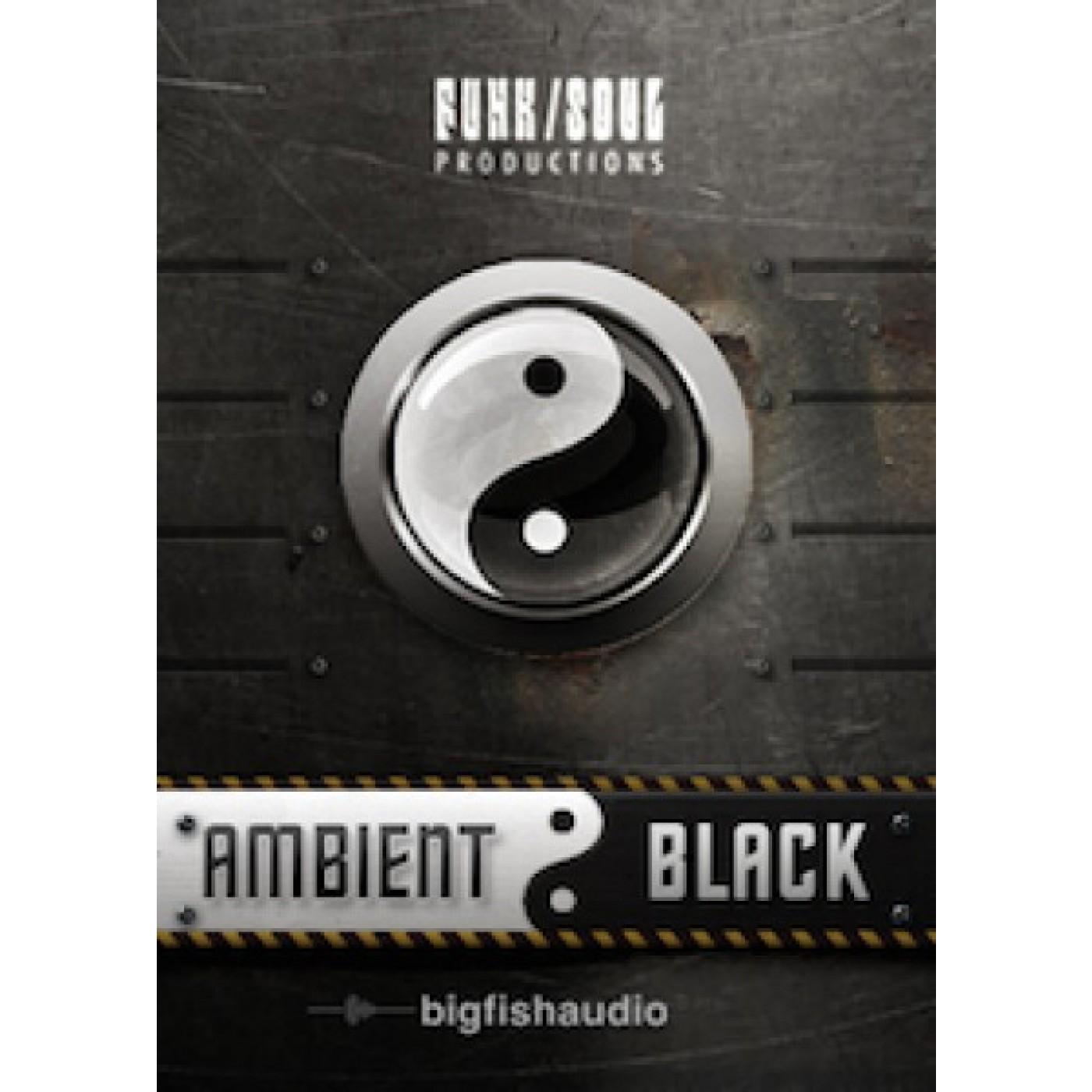 Big Fish Audio AMBIENT BLACK Download