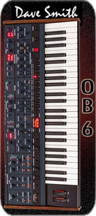 DSI OB6 Banner